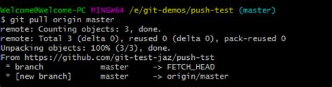 Git Push command [Explained with 4 Examples]