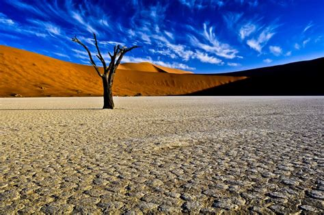 Deadvlei, Namibia | Most Beautiful Places in the World