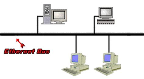 Ethernet LANs: Networks For Dummies