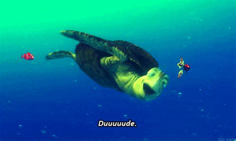 Is that a flying sea turtle? Kind of