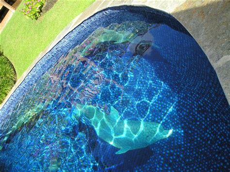 Changing The Look Of Swimming Pools: 3D Ceramic Tile Art