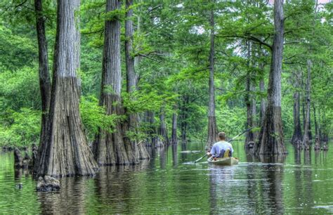 10 Things People From Louisiana Always Have To Explain To