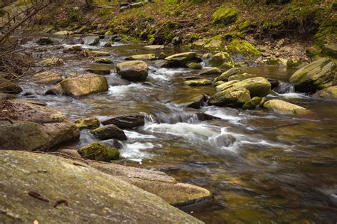 Free picture: mountain river, nature, rocky river, shallow