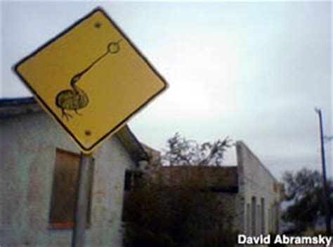 Amarillo, TX - Weird Streets Signs in Yards