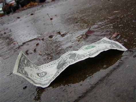 Dollar wet ground   I did a photo shoot with this dollar