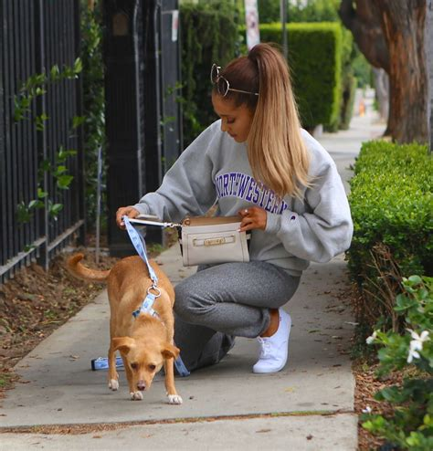 Ariana Grande: With her Famous pup Toulouse -11 | GotCeleb